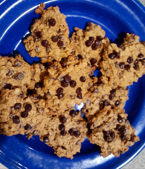 Revisit Childhood Memories With Comforting Vegan, Gluten-Free Oatmeal Chocolate Chip Cookies