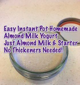 Easy Instant Pot Homemade Almond Milk Yogurt - Just Almond Milk and Starter - No Thickeners Needed!