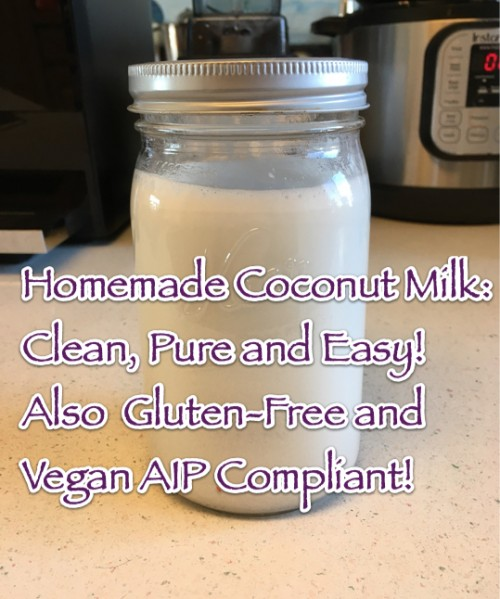 Homemade Coconut Milk Clean Pure Easy Also Gluten-Free and Vegan AIP Compliant