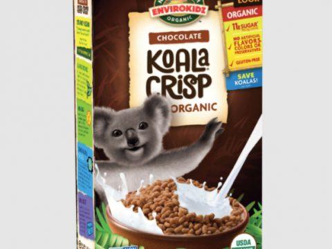 Vegan Cocoa Rice Crispy Treats - Gluten-Free and Organic Too