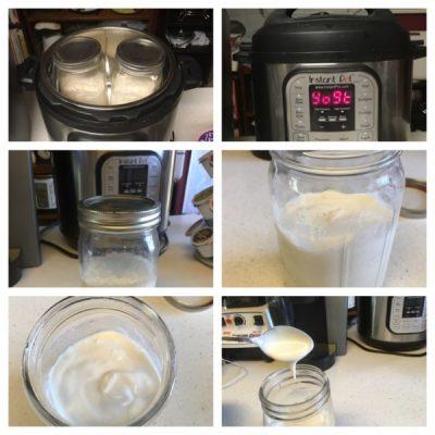 vegan yoghurt instant pot yogurt 625